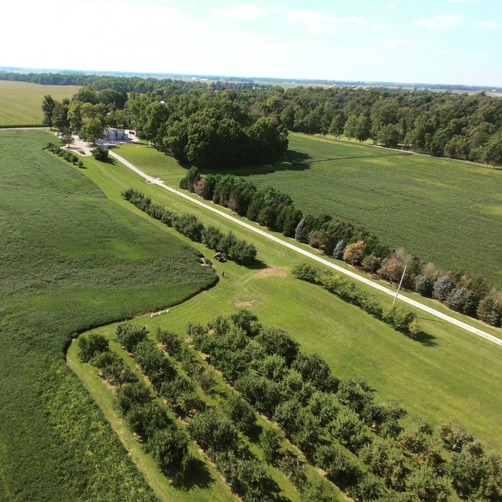 apple orchard | Rossville, IN | Hillside Acres
