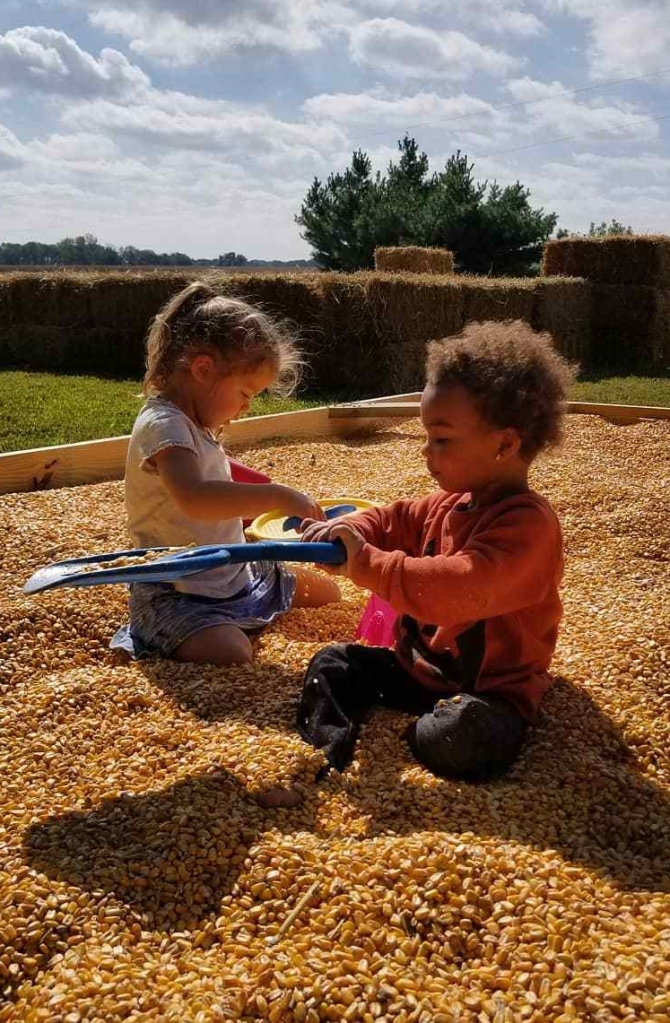 corn box | Hillside Acres | fall activities