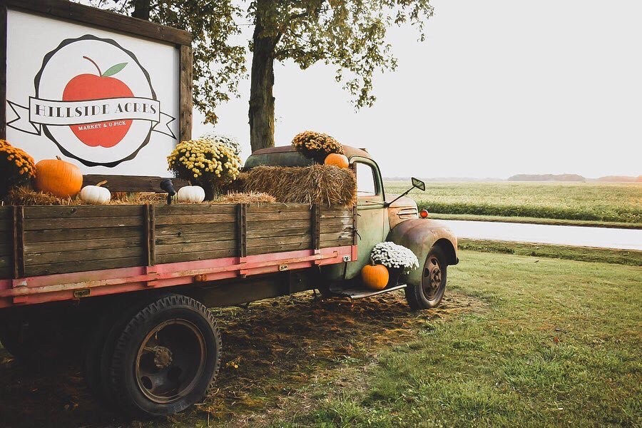 U-Pick farm | Hillside Acres | apple orchard | mums | Pumpkins | pumpkin patch | Rossville | antique truck | countryside | beanfield |