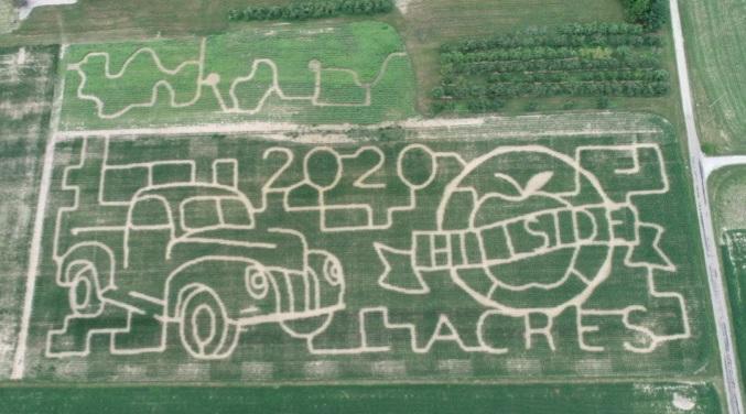 corn maze | hillside acres | 7 acres of corn fun
